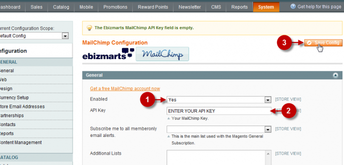 Screenshot of the configuration of the MailChimp extension for the Magento platform.
